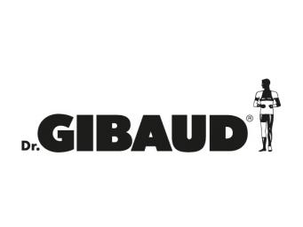 Dr Gibaud